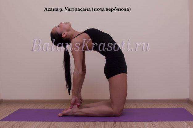Асана 9. Уштрасана (поза верблюда)